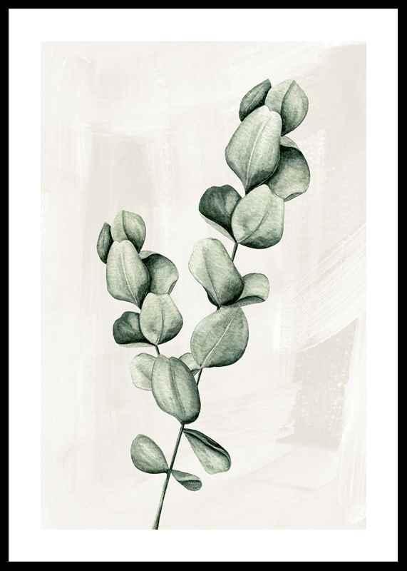 Eucalyptus Watercolor
