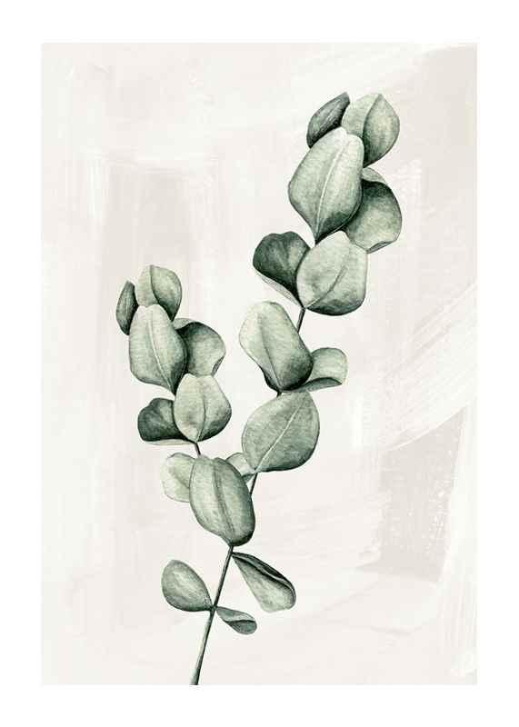 Eucalyptus Watercolor-1