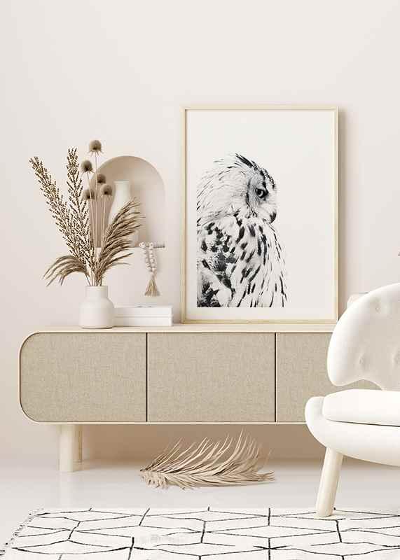 Snow Owl-4