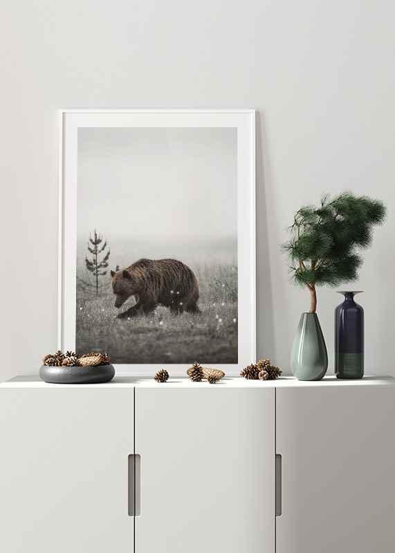 Winter Bear-4