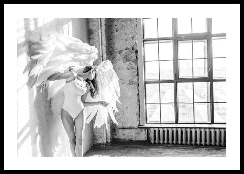White Wings No2