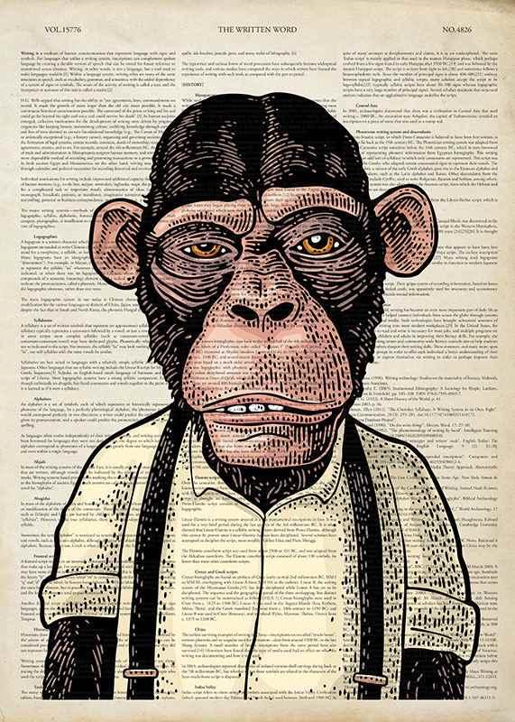 The Chimpanzee -1