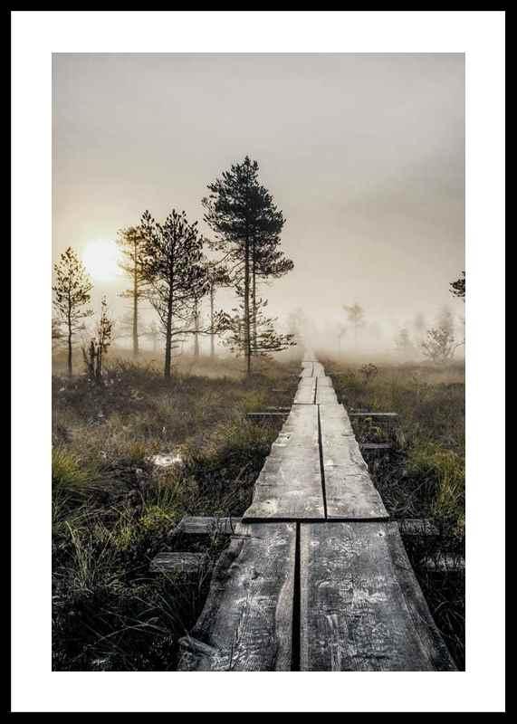 Torronsuo Wilderness