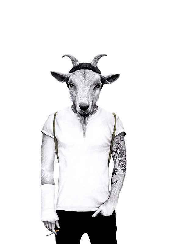 Hipster goat-1