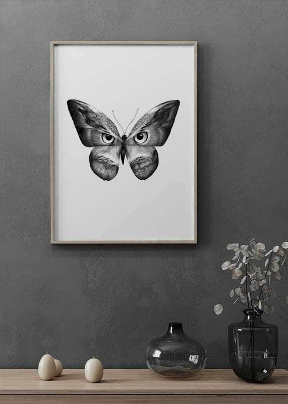 Owlifly-2