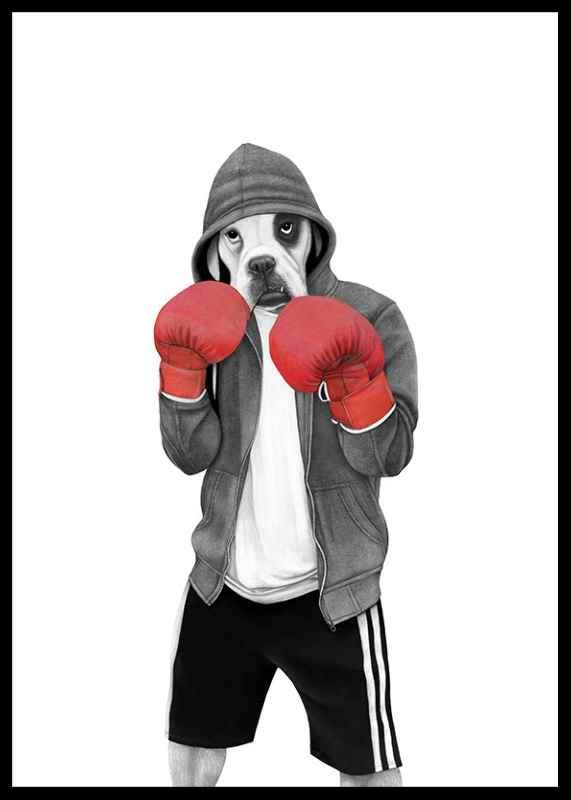 Street boxer