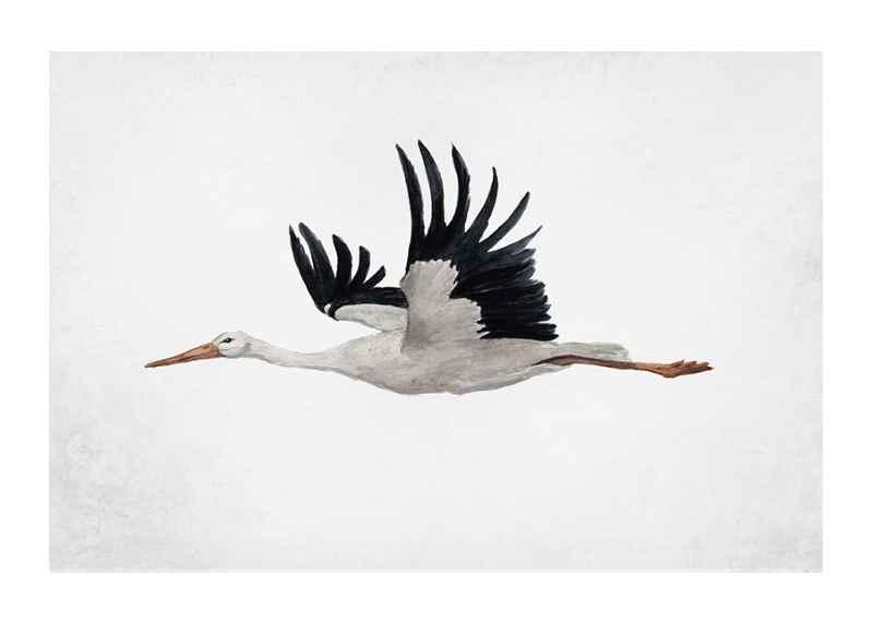 Watercolor Stork-1