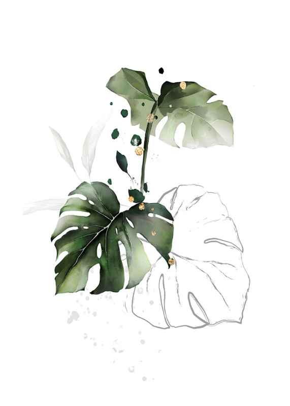 Watercolor Botanical No2-1