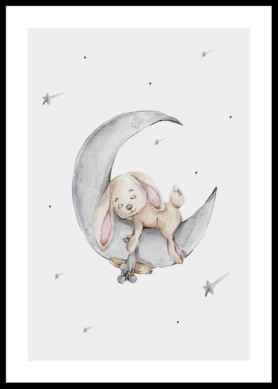 Sleeping Bunny-0