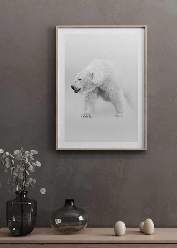 Faded Polar Bear-4