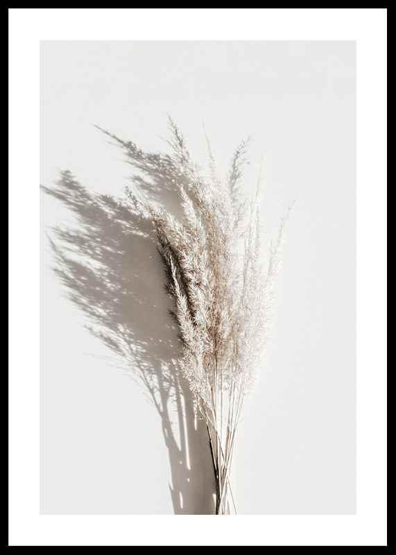 Dry Reeds No3