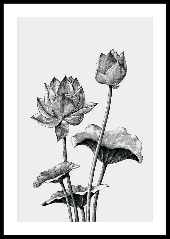 Sketched Flowers-0