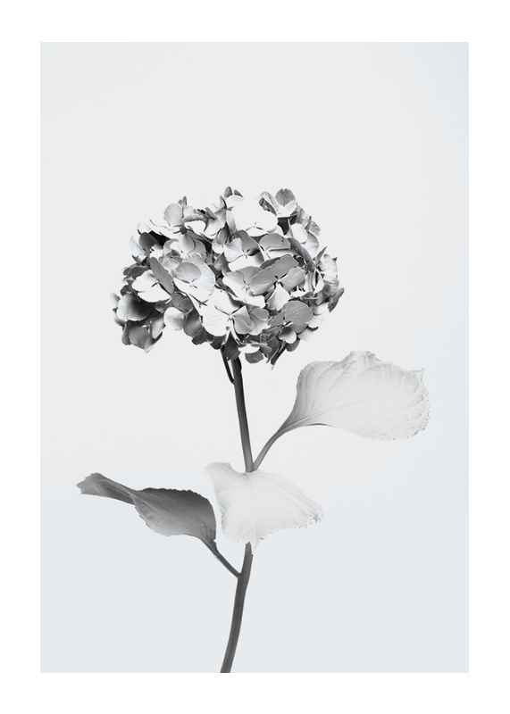 White Painted Flower-1