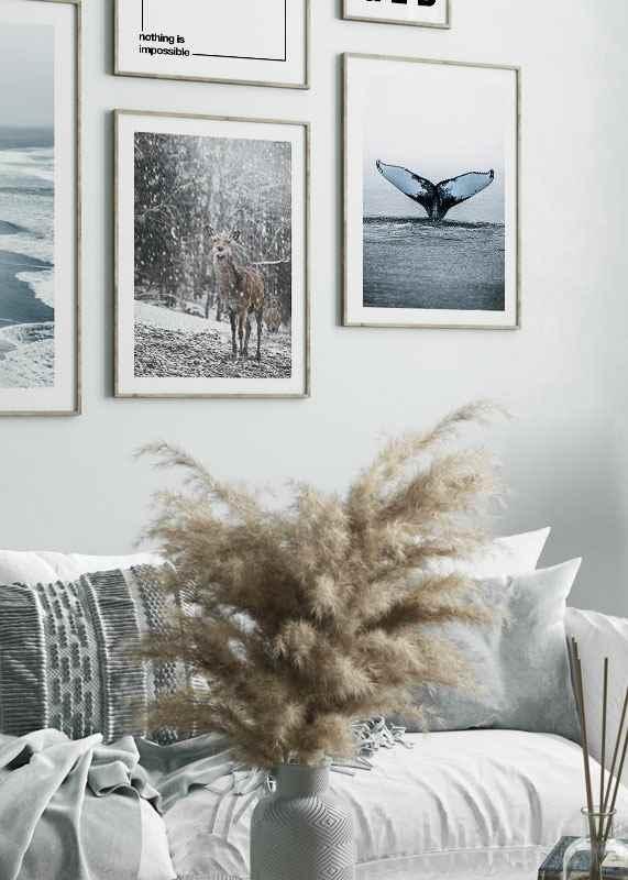 Deer In Snow-4