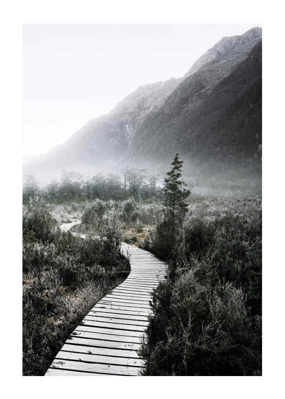 Boardwalk New Zealand-1