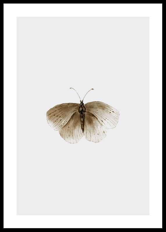 Watercolor Butterfly-0