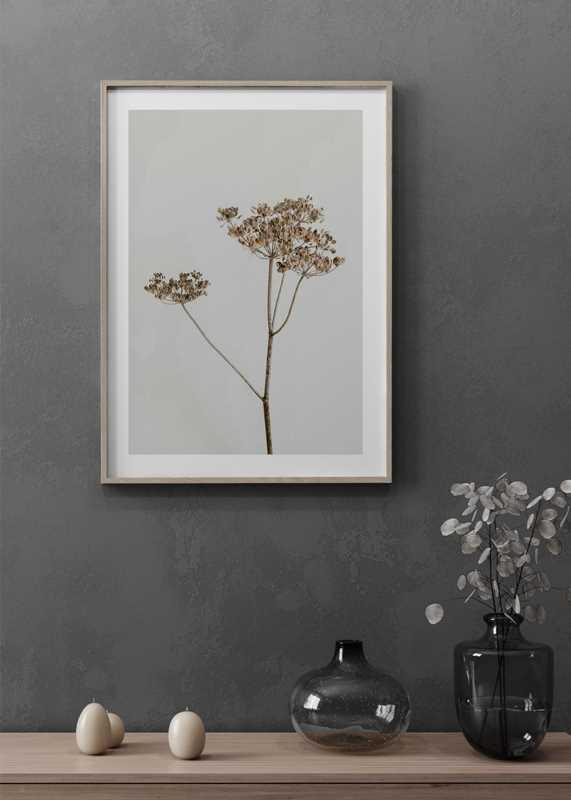 Single Dried Flower-4