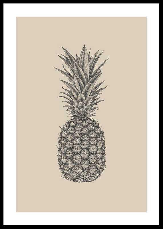Pineapple Sketch-0