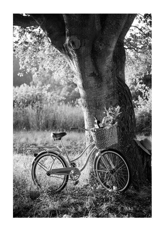 Bicycle With Picknick Basket-1