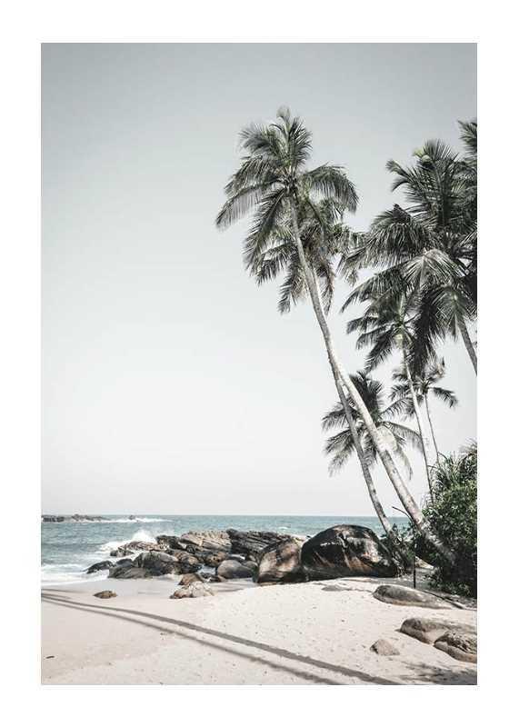 Anantara Palm Trees-1