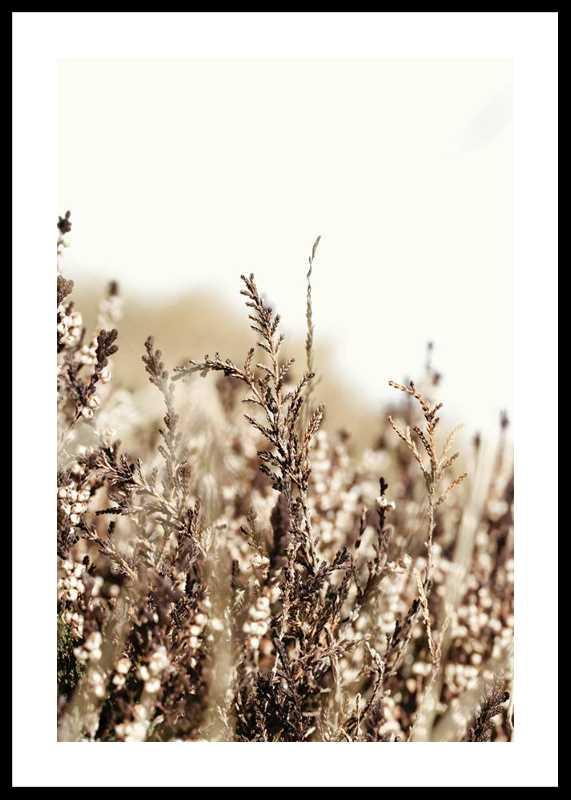 Growing Fields-0