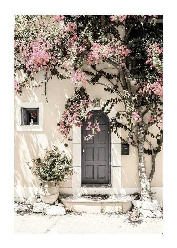 Door In Assos-1