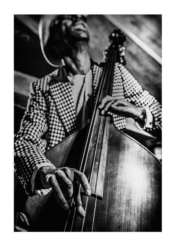 Musician On Bass-1