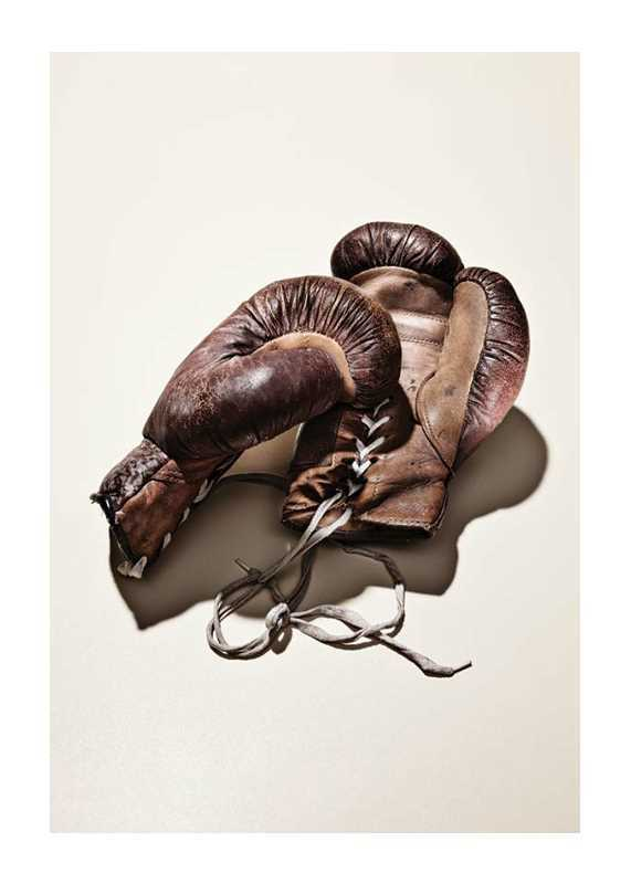 Boxing Gloves-1